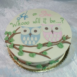 owl_gender_reveal-300x300