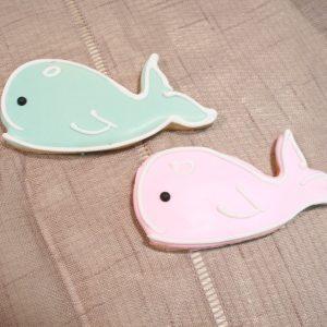 whales-2-e1562179192967-300x300